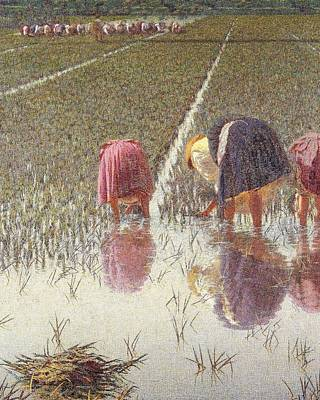 Rice Field Painting - For Eighty Pennies by Angelo Morbelli