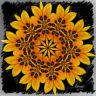 Photograph - For The Love Of Sunflowers by Barbara R MacPhail