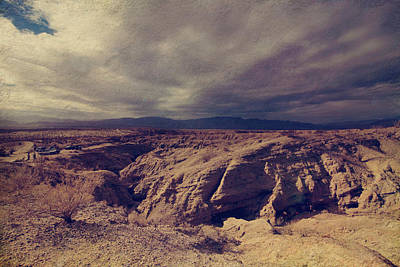 Anza Borrego Desert Photograph - For You I Will by Laurie Search