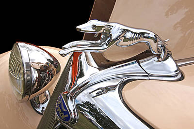 Old Hotrod Photograph - Ford Greyhound Hood Ornament 1932 by Gill Billington
