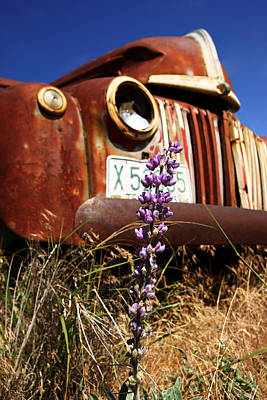 Photograph - Ford On The Palouse No.3 by Daniel Woodrum