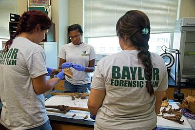 Forensic Scientists Identifying Remains Art Print