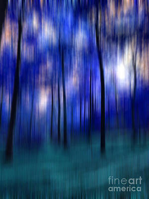 Photograph - Forest Abstract 2 by Angela Bruno