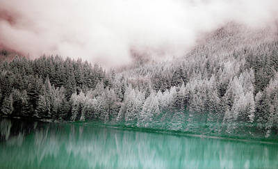 Tranquility Photograph - Forest And Pristine Lake by Marlene Ford