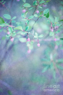 Forest Bells Art Print by Priska Wettstein