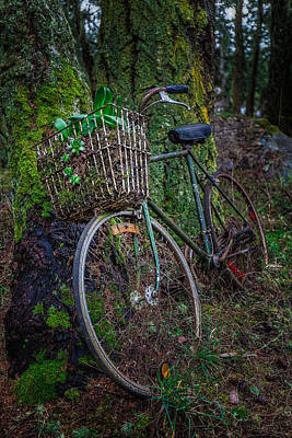 Pine Needle Baskets Photograph - Forest Bike by Thomas Hall