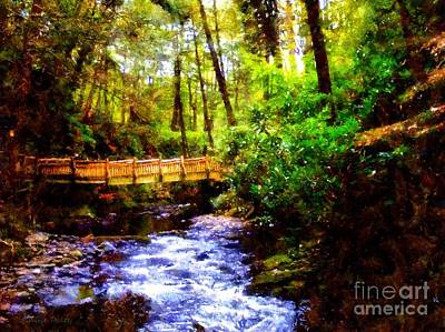 Photograph - Forest Bridge by Janine Riley
