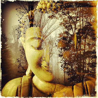Photograph - Forest Buddha by Paul Cutright