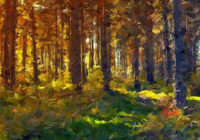Forest Colors Art Print by Steve K