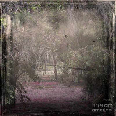 Element Photograph - Forest Dream by Stelios Kleanthous