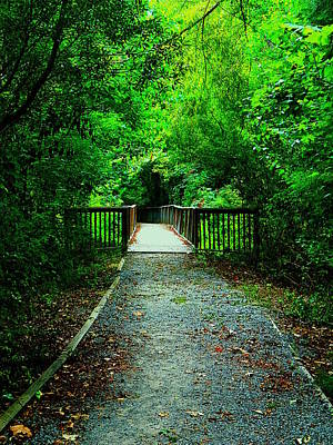 Forest Entrance Art Print by Ester  Rogers