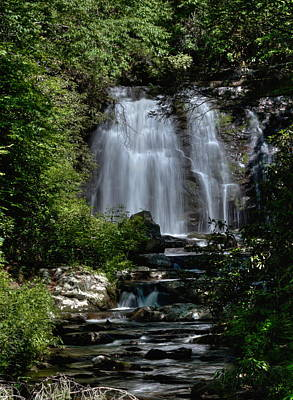 Photograph - Forest Falls by Coby Cooper