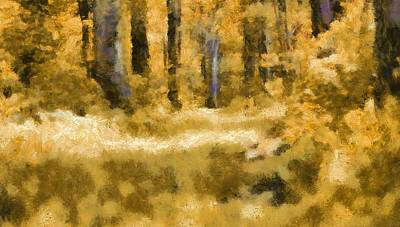 Pathway Mixed Media - Forest Floor In Autumn by Dan Sproul