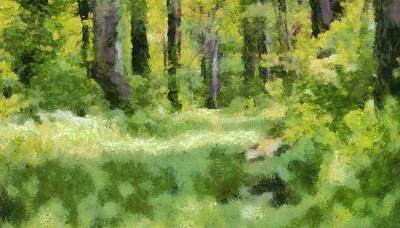Pathway Mixed Media - Forest Floor In Summer by Dan Sproul