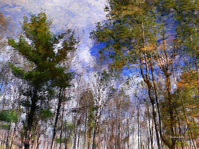 Photograph - Forest Impressions by Christina Rollo