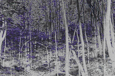 Negative Effect Digital Art - Forest  by Jonathan Welch