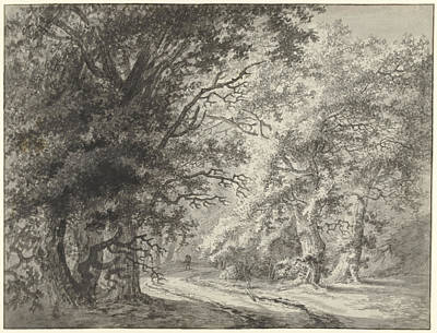 Dirt Roads Drawing - Forest Landscape With Dirt Road And Traveler by Quint Lox