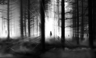 Photograph - Forest... by Mariusz Zawadzki