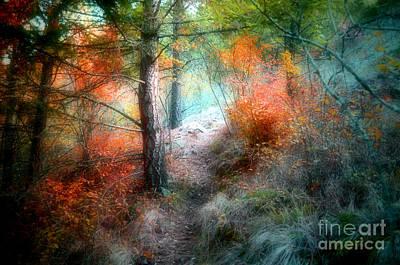 Forest Mysteries Art Print