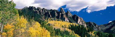 Color Guard Photograph - Forest On A Mountain, Jackson Guard by Panoramic Images