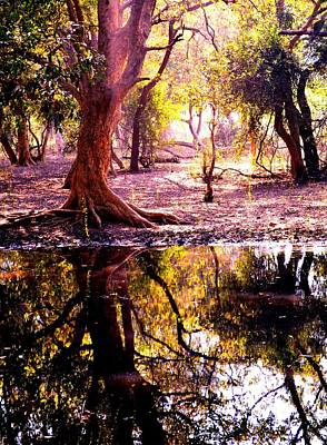 Forest Reflection Art Print by Deepti Chahar