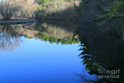 Reflection Photograph - Forest Reflections  by Neal Eslinger