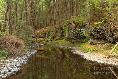 Photograph - Forest Refletions In Raymondskill by Adam Jewell