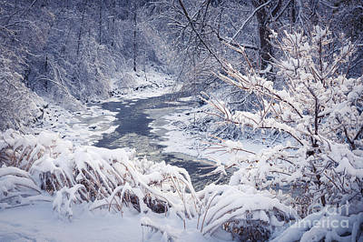 Forest River In Winter Snow Art Print