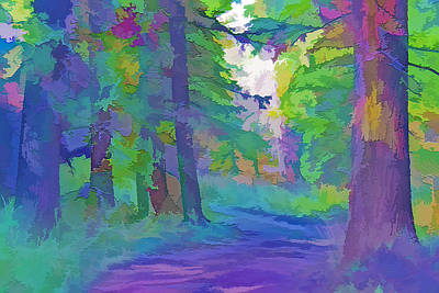 Country Dirt Roads Mixed Media - Forest Road - Color Splash 2 by Steve Ohlsen
