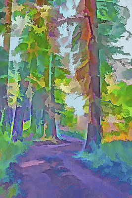 Dirt Roads Mixed Media - Forest Road - Color Splash 4 by Steve Ohlsen