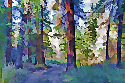 Country Dirt Roads Mixed Media - Forest Road - Color Splash by Steve Ohlsen