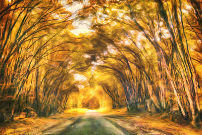 Forest Road Art Print by Joel Olives