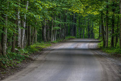 Photograph - Forest Road by Sebastian Musial