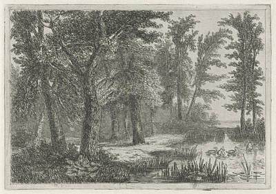 Wood Duck Drawing - Forest Scene With A Natural Pond With Ducks by Hermanus Jan Hendrik Van Rijkelijkhuysen