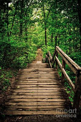 Forest Stairway Original