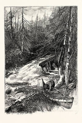 Forest Stream, And Timber Slide, Canada Art Print