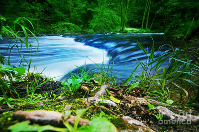 Summer Landscape Photograph - Forest Stream Running Fast by Michal Bednarek