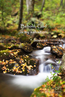 Isaiah Photograph - Forest Stream With Scripture by Jill Lang