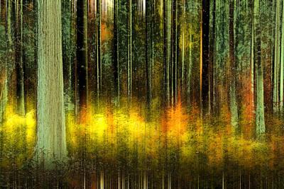 Forest V Art Print