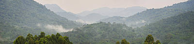 Uganda Wall Art - Photograph - Forest With Mountain Range, Bwindi by Panoramic Images