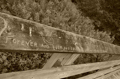 Photograph - Forever And Ever - Sepia by Marilyn Wilson