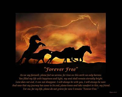 Of Horses Photograph - Forever Free by Stephanie Laird