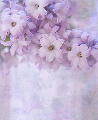 Hyacinths Wall Art - Photograph - Forever More by Kim Hojnacki