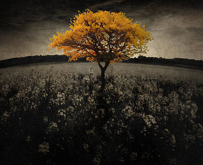 Epic Amazing Colors Landscape Digital Modern Still Life Trees Warm Natural Digital Art - Forever You by Brett Pfister