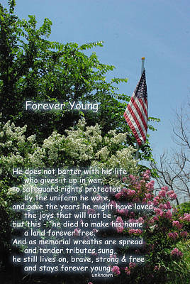 Photograph - Forever Young Memorial Flag by Robyn Stacey