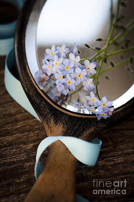 Photograph - Forget Me Not by Jan Bickerton