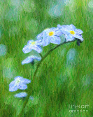 Digital Art - Forget Me Not Myostis by Liz Leyden