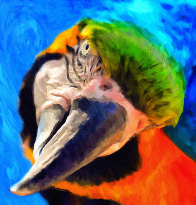 Parrot Art Painting - Forget My Beak I'm Beautiful Inside by Georgiana Romanovna