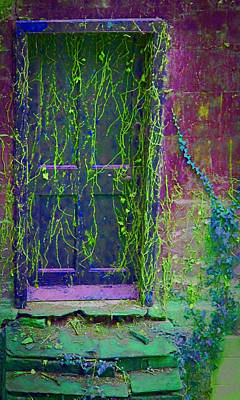 Photograph - Forgotten Doorway by Tony Grider