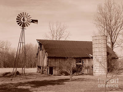 Forgotten Farm Art Print by Judy Whitton